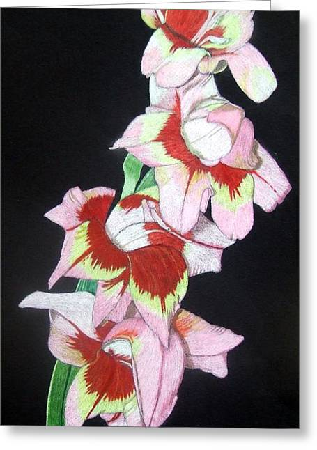 Gladiolas Paintings Greeting Cards - Inner Beauty Greeting Card by Anita Putman