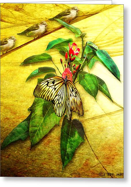Gold Leave Greeting Cards - Insect - Butterfly - Sparrow - Happy Summer  Greeting Card by Yvon van der Wijk