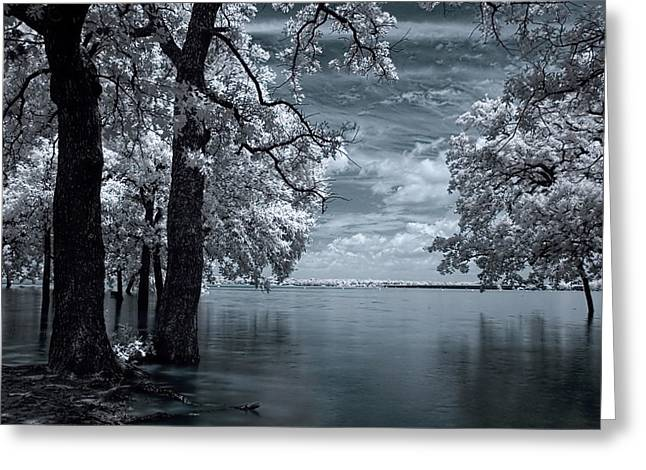 Infrared Greeting Cards - Inside Greeting Card by Mike Irwin