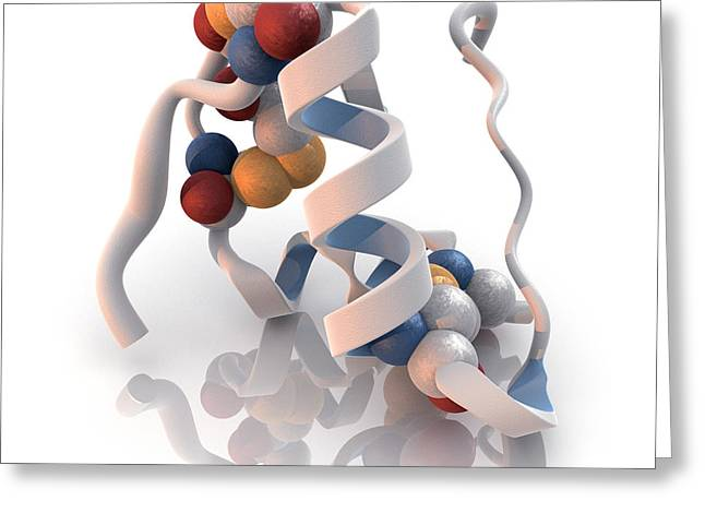 Helix Greeting Cards - Insulin Molecule Greeting Card by Phantatomix
