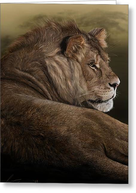 Lions Greeting Cards - Intent Greeting Card by Laura Klassen