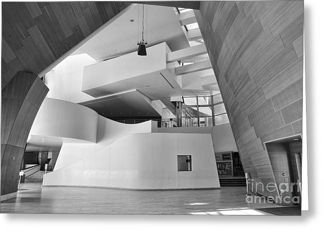 Stainless Steel Greeting Cards - Interior BW Disney Greeting Card by Chuck Kuhn