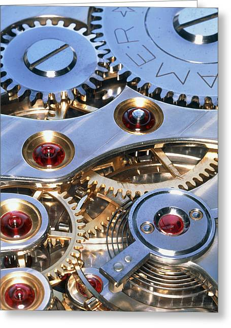 Mechanism Photographs Greeting Cards - Internal Cogs And Gears Of A 17-jewel Swiss Watch Greeting Card by David Parker