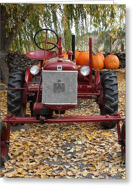 Mccormick Farmall Greeting Cards - International Harvester McCormick Farmall Cub Farm Tractor . 7D10305 Greeting Card by Wingsdomain Art and Photography
