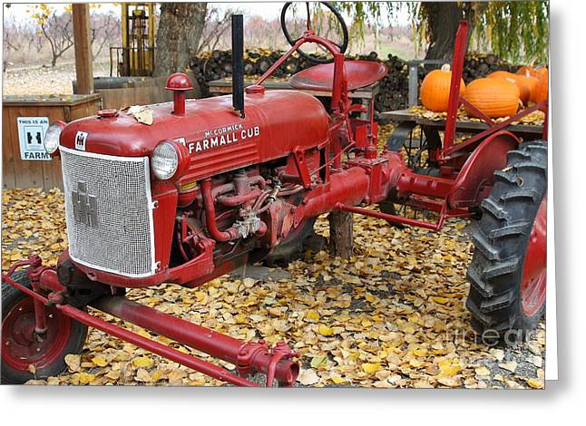 Mccormick Farmall Greeting Cards - International Harvester McCormick Farmall Cub Farm Tractor . 7D10309 Greeting Card by Wingsdomain Art and Photography