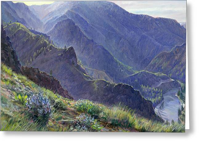 Salmon River Idaho Greeting Cards - Intimate Grandeur Greeting Card by Steve Spencer