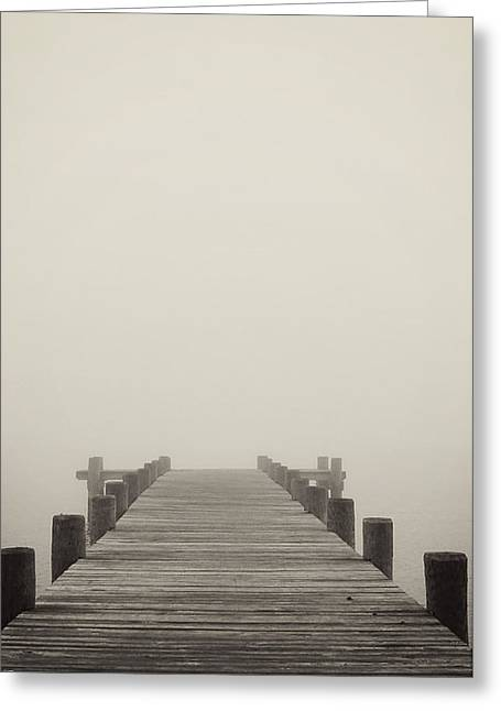 Landscape Iphone Phone Case Greeting Cards - Into the Fog Greeting Card by Terry DeLuco