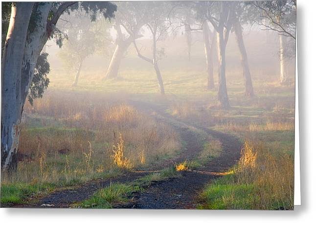 Path Greeting Cards - Into the Mist Greeting Card by Mike  Dawson