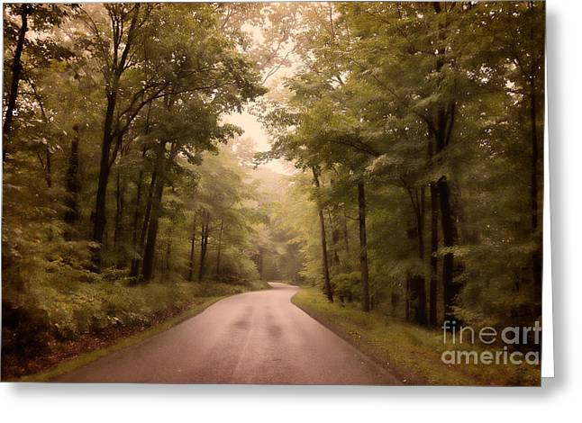 Into The Mists Greeting Card by Lois Bryan