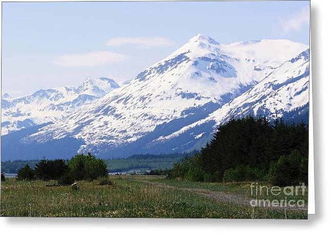 Mountain Road Greeting Cards - Into the Wilderness Greeting Card by Laurinda Bowling