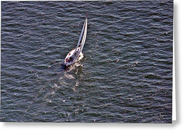 Wind In The Sails Greeting Cards - Into the Wind Greeting Card by Duncan Pearson
