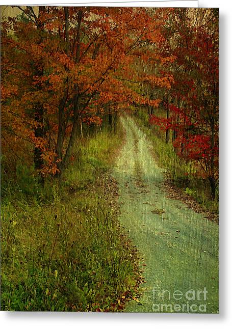 Country Dirt Roads Mixed Media Greeting Cards - Into The Woods Of Fall Greeting Card by Deborah Benoit