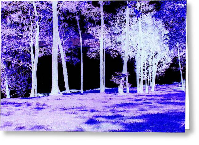 Inversion Digital Art Greeting Cards - Inversion Greeting Card by Sonja Saltzgiver