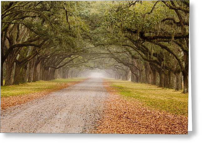 Plantation Photographs Greeting Cards - Inviting Greeting Card by Eggers   Photography
