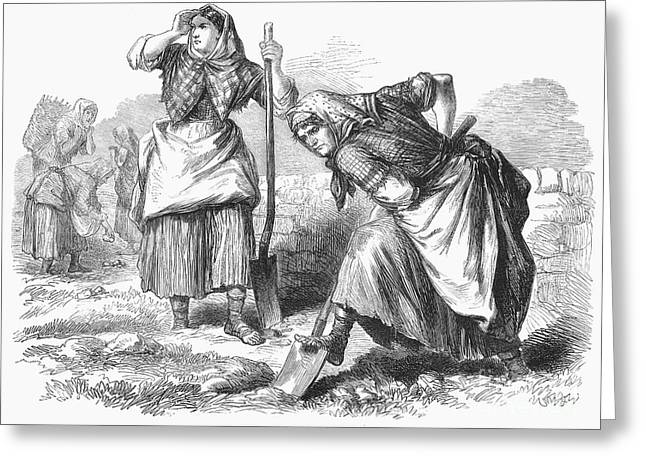 Kerchief Greeting Cards - Ireland: Field Work, 1870 Greeting Card by Granger