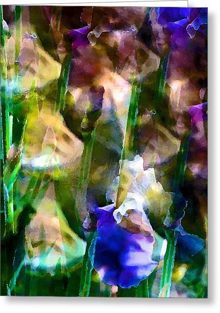 Pamela Cooper Greeting Cards - Iris 52 Greeting Card by Pamela Cooper
