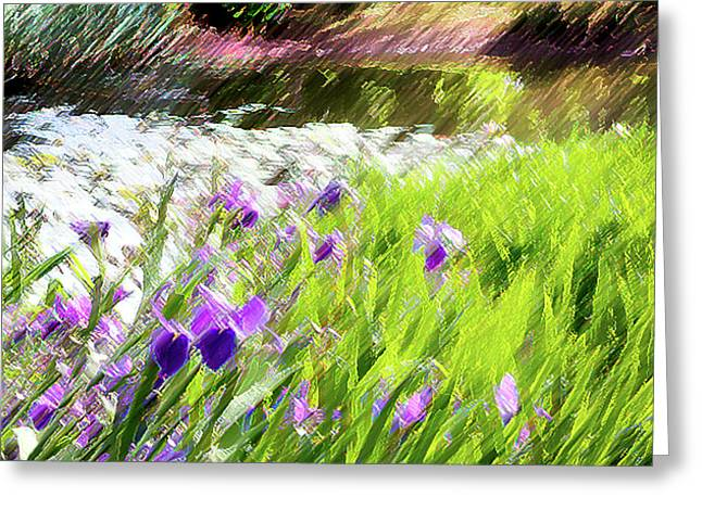 Pond Framed Prints Greeting Cards - Iris and Water Greeting Card by Linde Townsend