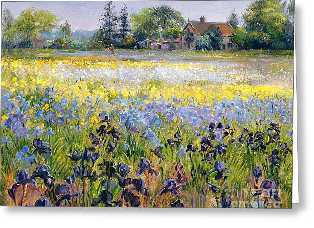 Irises And Two Fir Trees Greeting Card by Timothy Easton