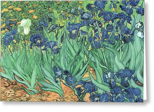 Post-impressionism Greeting Cards - Irises Greeting Card by Vincent Van Gogh