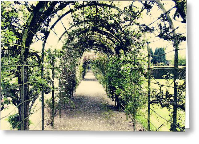 Trellis Greeting Cards - Irish Archway Greeting Card by Linde Townsend