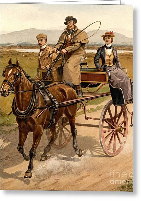 Buggy Whip Greeting Cards - Irish Jaunting Car Greeting Card by Padre Art