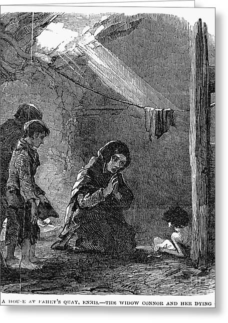 Famines Greeting Cards - Irish Potato Famine, 1846-47 Greeting Card by Granger