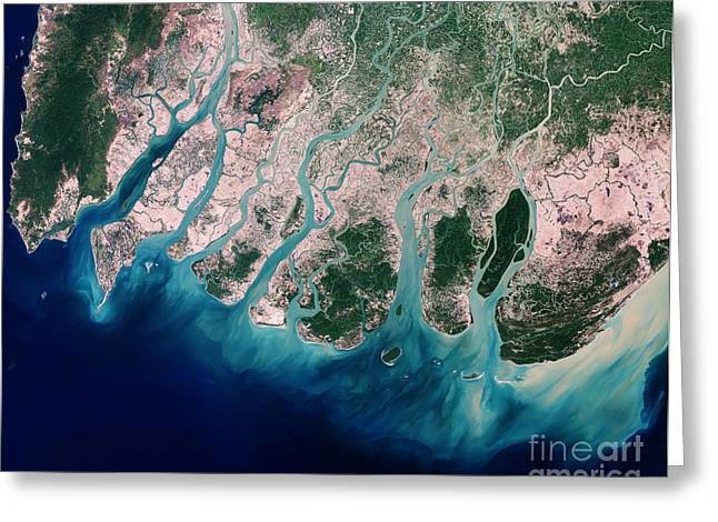 Mangrove Forest Greeting Cards - Irrawaddy River Delta Greeting Card by Nasa