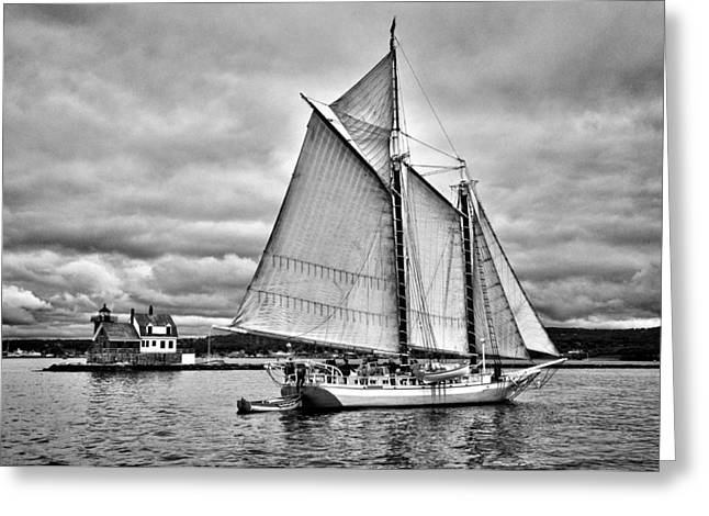 Schooner Greeting Cards - Isaac H. Evans Greeting Card by Fred LeBlanc