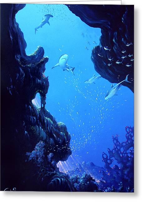 Tropical Oceans Greeting Cards - Isla Del Coco Greeting Card by Hans Doller