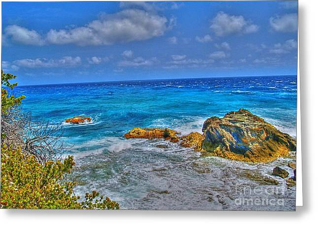 Shinny Greeting Cards - Isla Mujeres III Greeting Card by Jimmy Ostgard