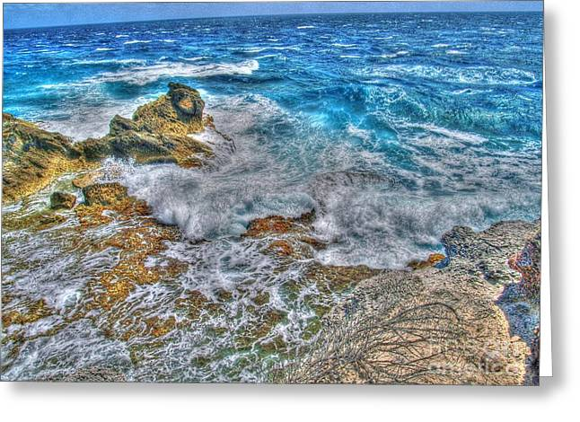 Shinny Greeting Cards - Isla Mujeres IV Greeting Card by Jimmy Ostgard