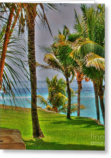 Mujeres Greeting Cards - Isla Mujeres Greeting Card by Jimmy Ostgard