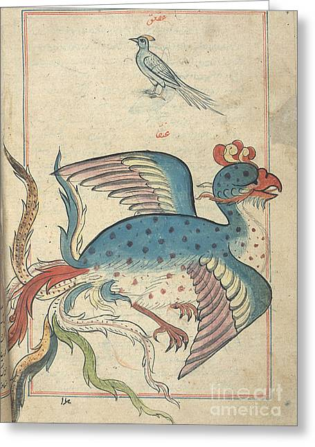 Aspect Greeting Cards - Islamic Mythical Bird, Simurgh, 17th Greeting Card by Science Source