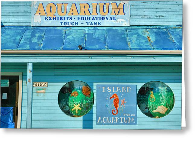 Sealife Posters Greeting Cards - Island Aquarium Greeting Card by Steven Ainsworth
