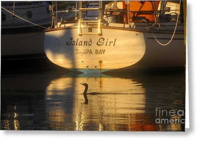 Docked Boats Greeting Cards - Island Girl Greeting Card by David Lee Thompson