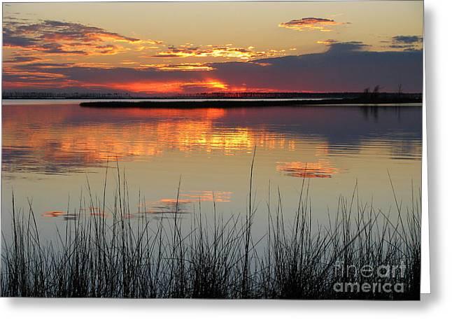 Suzanne Clark Greeting Cards - Island Sunset Greeting Card by Suzanne Clark