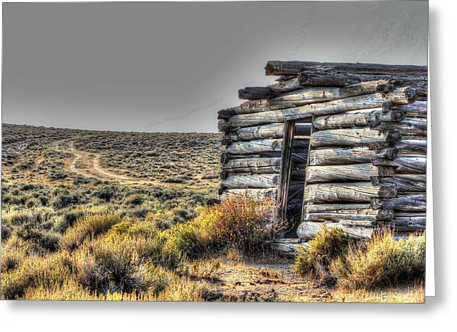 Old Cabins Greeting Cards - Isolation Won Greeting Card by Vikki Correll
