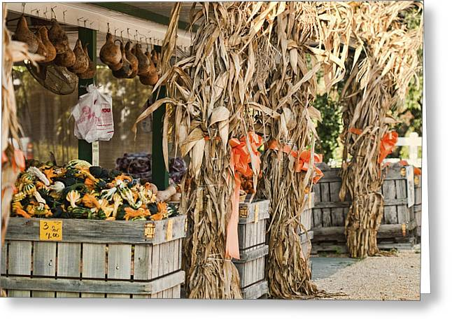 Isoms Orchard In Fall Regalia Greeting Card by Kathy Clark