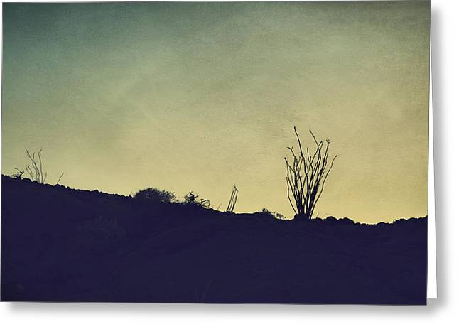 Ocotillo Cactus Greeting Cards - It All Fades Away Greeting Card by Laurie Search