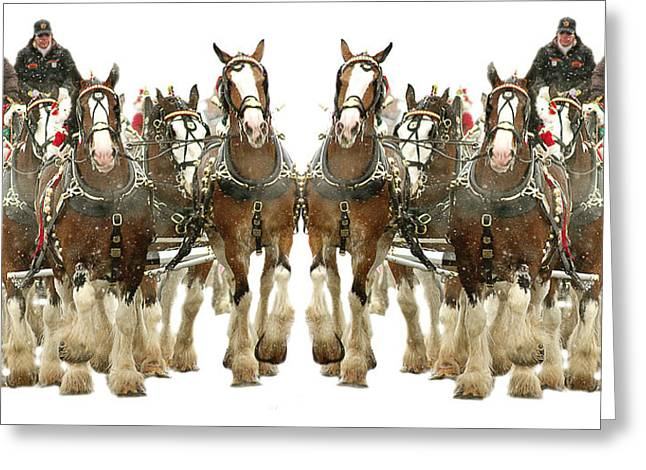 It's A Clydesdale Christmas Greeting Card by Jenny Gandert