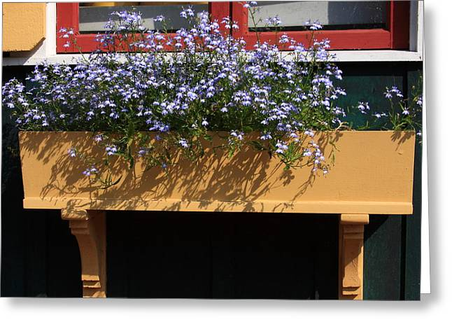 Flower Boxes Greeting Cards - Its Summer Greeting Card by Lyle Hatch