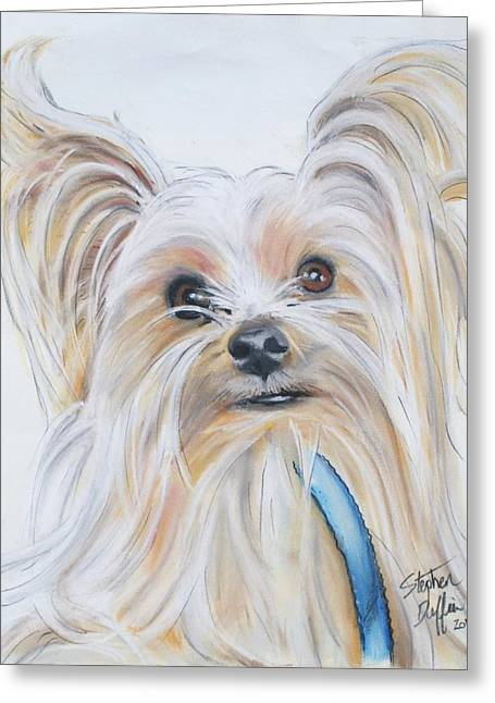 Terrier Pastels Greeting Cards - Jack Greeting Card by Stephen Duffin
