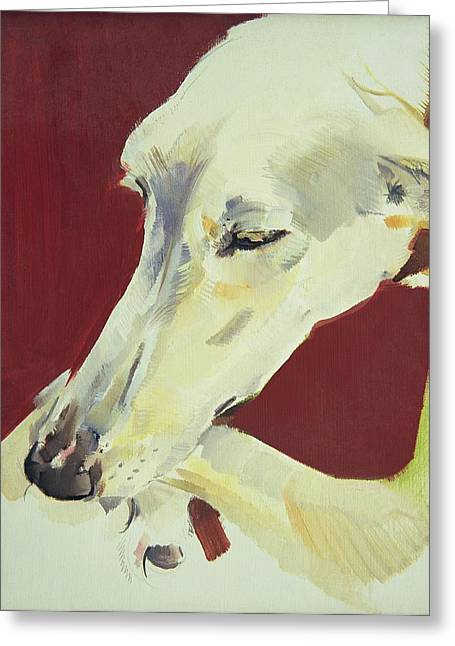 Whippet Greeting Cards - Jack Swan I Greeting Card by Sally Muir