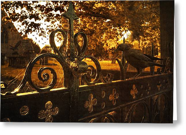 Jackdaws Greeting Cards - Jackdaw On Church Gates Greeting Card by Amanda And Christopher Elwell