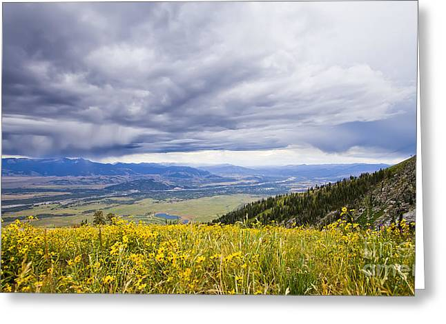 Jackson Greeting Cards - Jackson Hole Rain Clouds Greeting Card by Dustin K Ryan