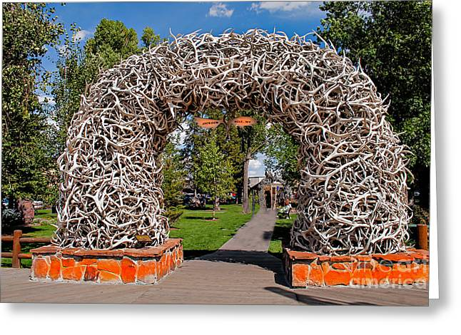 Jackson Hole Greeting Card by Robert Bales