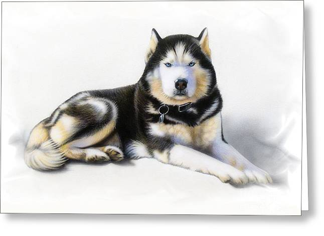 Siberian Husky Greeting Cards - Jacob Greeting Card by Sandi Baker