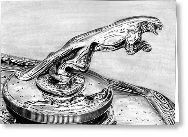 Vintage Hood Ornament Drawings Greeting Cards - Jaguar Hood Emblem     Greeting Card by Peter Piatt