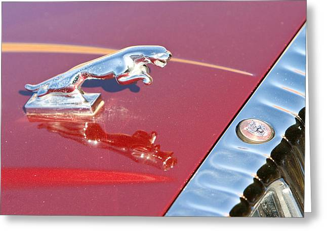 Exceptional Greeting Cards - Jaguar Hood Ornamen and Emblem Greeting Card by James BO  Insogna
