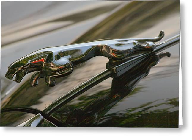 Vintage Hood Ornament Paintings Greeting Cards - Jaguar Hood Ornament Greeting Card by Melodie Douglas